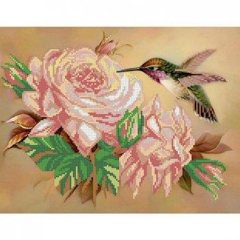 """Рисунок для вышивания бисером """"колибри с розой"""""""