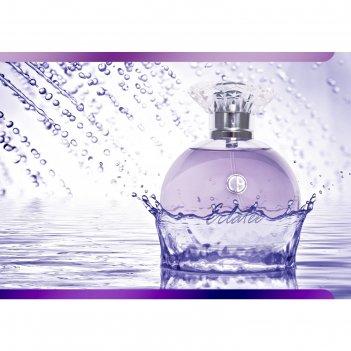 Парфюмированная вода женская carlo bossi eclatee violet, 100 мл