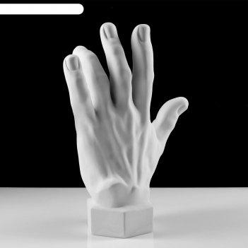 Гипсовая фигура, кисть вертикальная 14 х 31.5 х 42 см