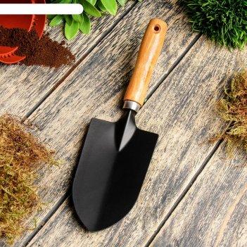 Совок посадочный, длина 27 см, ширина 7 см, деревянная ручка