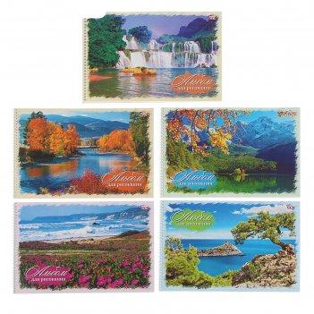Альбом для рисования а4, 40 листов на гребне «природа», блок офсет 100г/м2