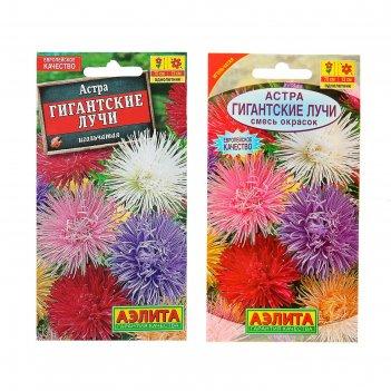 Семена цветов астра гигантские лучи, смесь окрасок, о, 0,2 г
