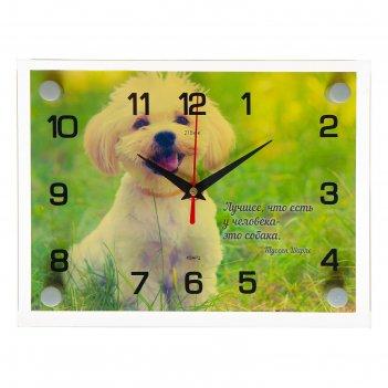 Часы настенные, серия: животный мир, собачка, 20х26 см микс