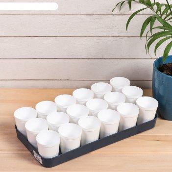 Набор для рассады: стаканы по 250 мл (18 шт.), поддон, цвет микс