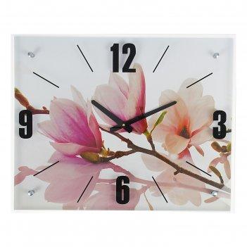 Часы настенные, серия: цветы, бело-сиреневые цветы, 40х50  см, микс