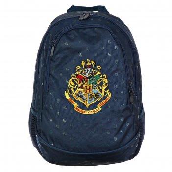 Рюкзак школьный hatber sreet 42 х 30 х 20, для мальчика, гарри поттер, син
