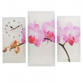 Часы настенные, серия: цветы, модульные розовые цветки орхидеи, 60х80 см,