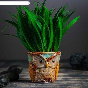 Кашпо керамическое сова микс цвета 7*7*6,5 см