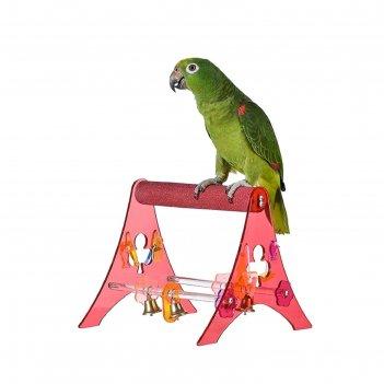 Игрушка для птиц акриловая подставка м 2.5 x 18 x 20 см