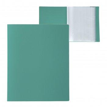 Папка с 80 прозрачными вкладышами а4, 700 мкм, calligrata, песок, зелёная