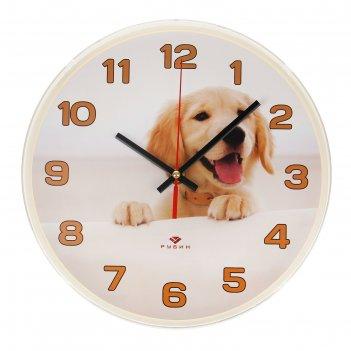 Часы настенные, серия: животный мир, золотистый ретривер, рубин, 25х25 см