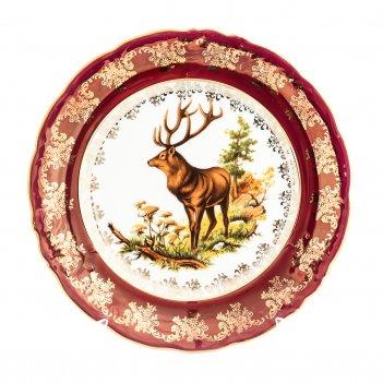 Набор тарелок 24 см фредерика охота красная (6 шт)