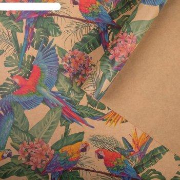 Бумага упаковочная крафтовая попугаи 50х70 см