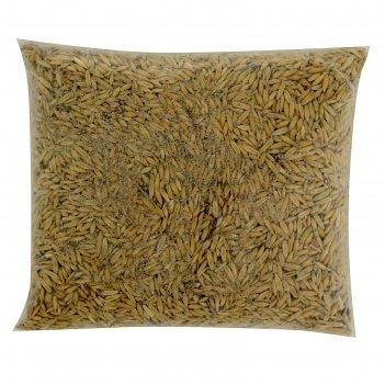 Семена овес, 800 г