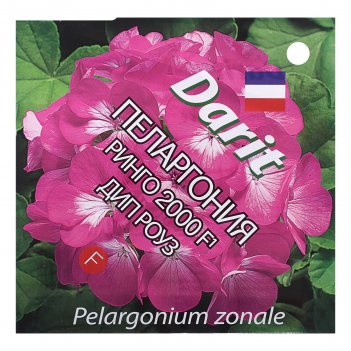 Семена цветов пеларгония ринго 2000 f1 дип роуз, мн, 4 шт