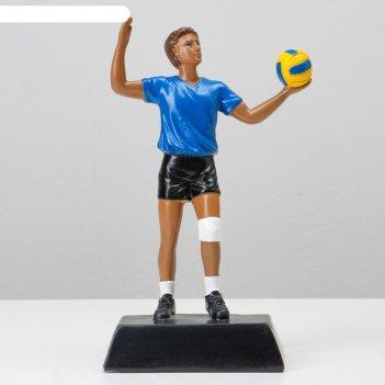 Статуэтка мужской волейбол 23*11*7см