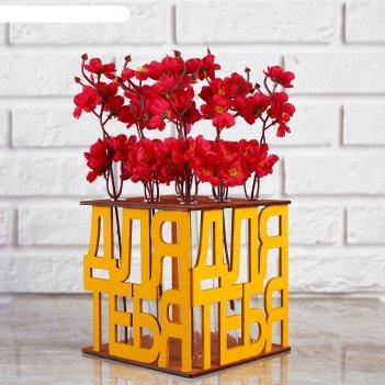 Ящик-кашпо подарочный с 9 колбами для тебя, морёный-жёлтый