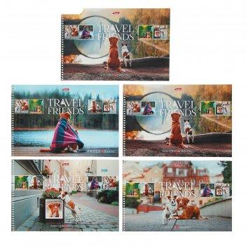 Альбом для рисования а4, 48 листов на гребне «путешествие друзей. выпуск №