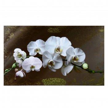 Картина-холст на подрамнике белые орихидеи 60х100 см