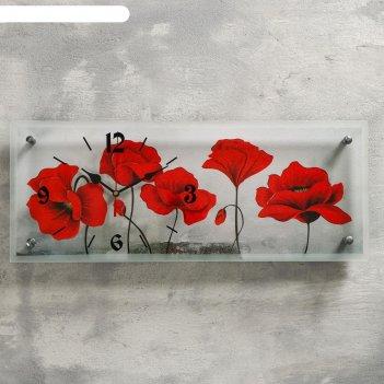 Часы настенные, серия: цветы, цветы, 20х50 см