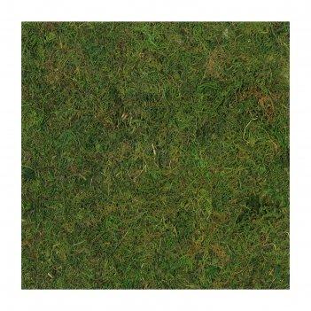 Листовой мох 30х30х0,5 см