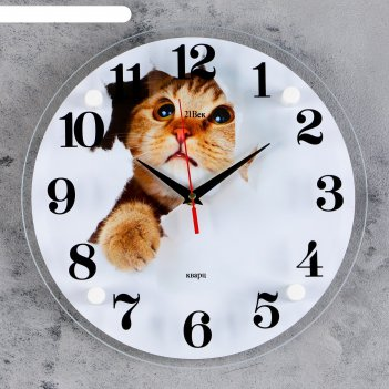 Часы настенные, серия: животный мир, кот, 30х30 см