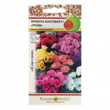 Семена цветов примула рози f1, махровая, смесь