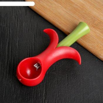 Удалитель косточек вишенка 14 см, цвет микс