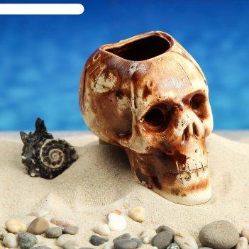 Аквадекор-грот для аквариума череп 8х11х8 см
