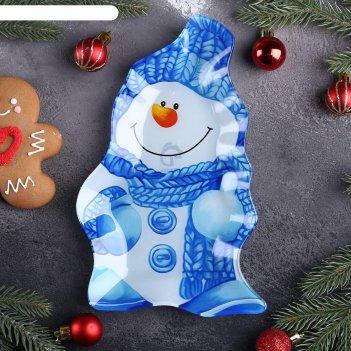 Блюдо сервировочное снеговик в голубом 25х15х2,5 см