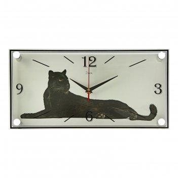Часы настенные, серия: животный мир, пума, 19х39 см