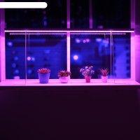 Светильник для растений, 18 вт, 22 мкмоль/с, длина 1200мм, высота установк