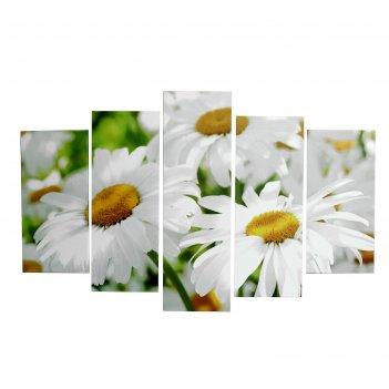 Картина модульная ромашки 2шт-25х52; 2шт-25х67; 1шт-25х80см  80*125 см