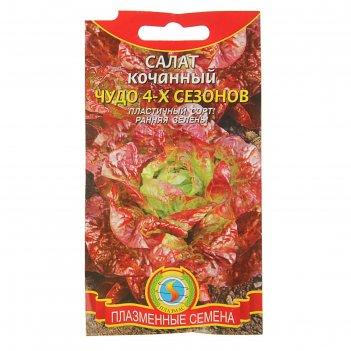 Семена салат кочанный чудо 4-х сезонов, 0,5 г
