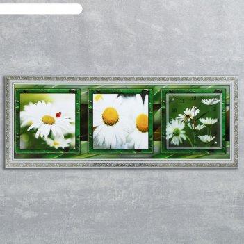 Часы-картина настенные, серия: цветы, ромашки в поле, 35х100  см, микс