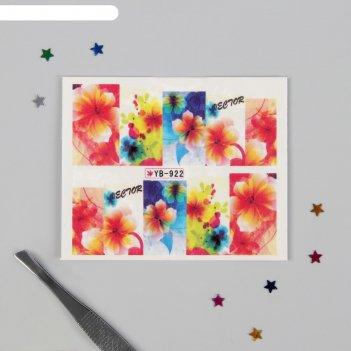 Слайдер-дизайн для ногтей «гибискус», разноцветный
