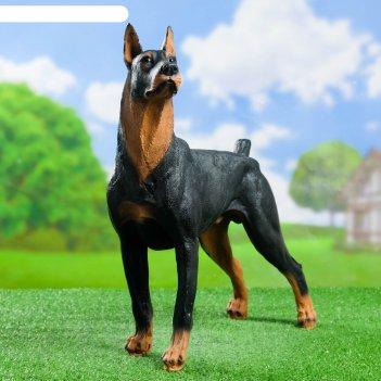 Садовая фигура собака доберман большой стоит h-48см