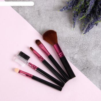 Набор кистей для макияжа, 5 предметов, цвет чёрный/малиновый