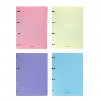 Тетрадь на кольцах а4 80л кл erichkrause pastel, микс 50165