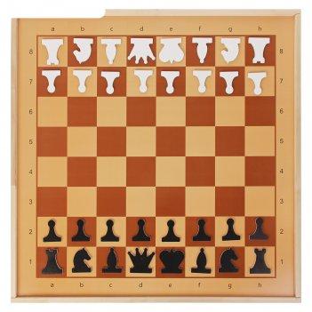 Демонстрационные шахматы магнитные (игровое поле 70х70 см, фигуры полимер,