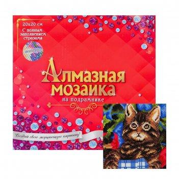 Алмазная мозаика с полным заполнением 20х18 котёнок в цветах ac20042