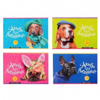 Альбом для рисования а4, 12 листов на скрепке dog fashion, обложка мелован