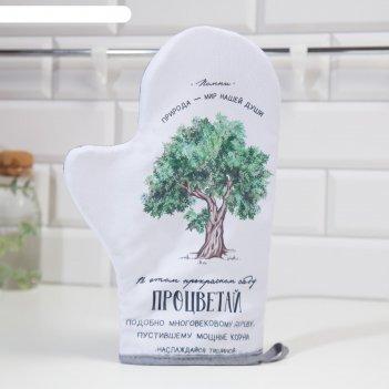 Варежка-прихватка доляна дерево 24х32см,габардин,35% х/л, 65% п/э, ватин 2