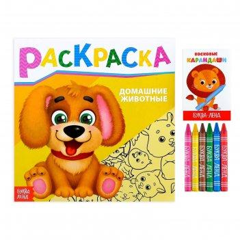 Раскраска с восковыми карандашами «домашние животные», 16 страниц