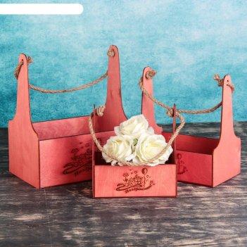 Набор кашпо деревянных подарочных мэлони элегант гравировка №2 ручка верёв