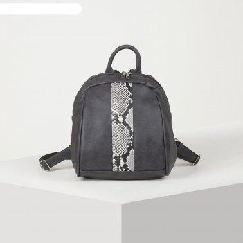 Рюкзак молод 1107, 26*15*26, отд на молнии, н/карман, черный