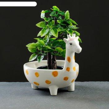 Кашпо керамическое жираф 19*13*13см