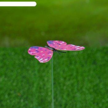 Штекер для комнатных растений бабочка 30*5*7 см