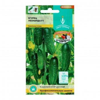 Семена огурец леонардо, f1, цв/п 0,3 г