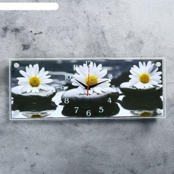 Часы настенные, серия: цветы, ромашки, 50х20  см, микс